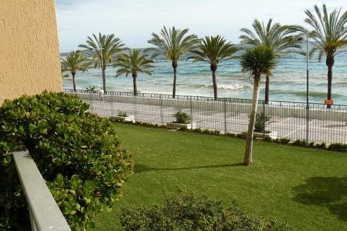 Вилла Марбелья Marbella 1-я линия моря 310 м2 , большой участок 2100 м2 Marbella Villa Rent