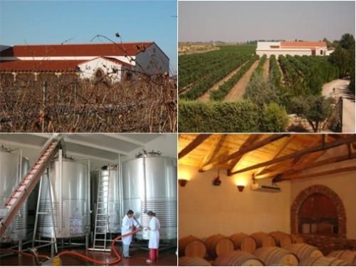 Винодельческие экскурсии (туры) в Испании – Винные экскурсии (туры) из Мадрида, Толедо Toledo – Вина и Бодеги Bodegas Кастилья ла Манча Castilla La Mancha