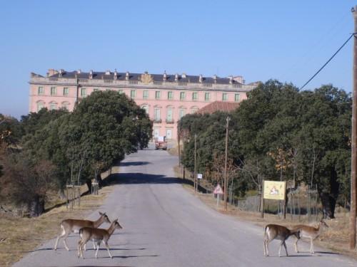 Королевский Дворец Рио Фрио El Palacio Real de Riofrío