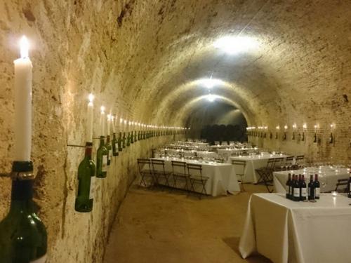 История виноделия в Испании. Династия Бурбонов.