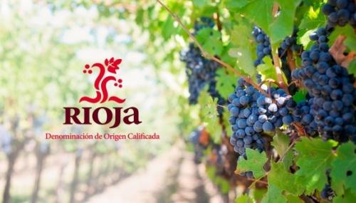 Дегустация вина в Испании, вино зоны ДОКа DOCa Риоха (Рьоха) Rioja , Мадрид Испания.